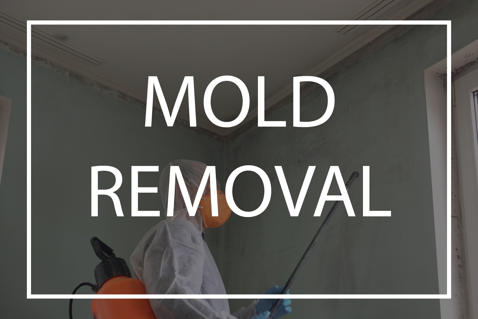 Services mold